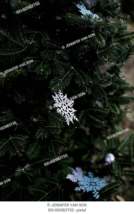 Paper snowflakes on Christmas tree