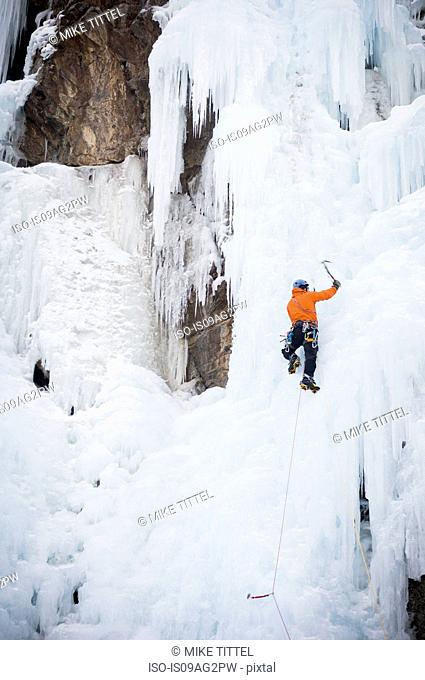 Man climbing Chinpokomon (WI4) at the Ouray Ice Park, Ouray, Colorado, USA