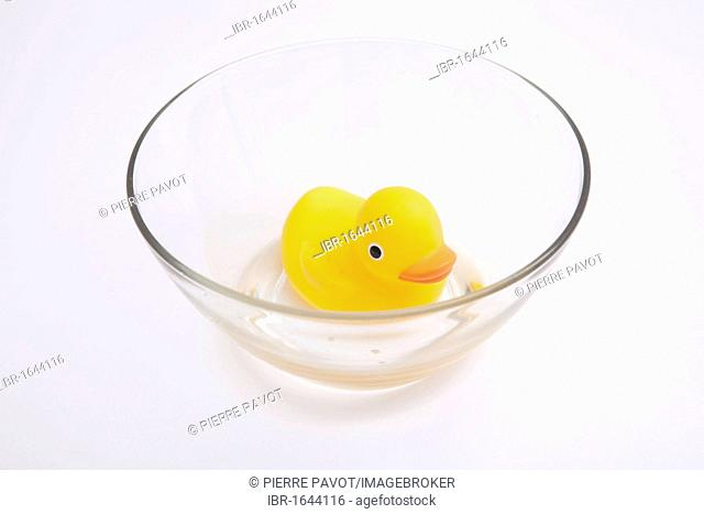 Rubber duck floating in a glass bowl with little water, water shortage