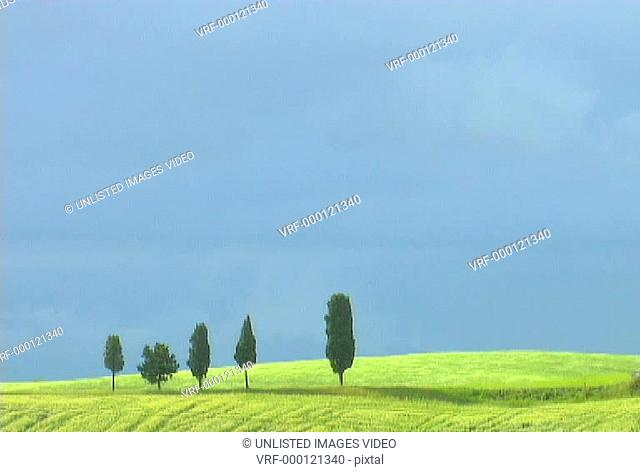 Italian Landscape 6