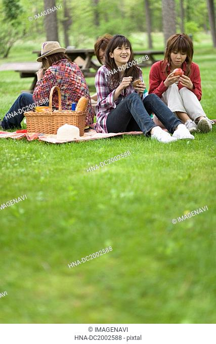 Men and Women Having a Picnic