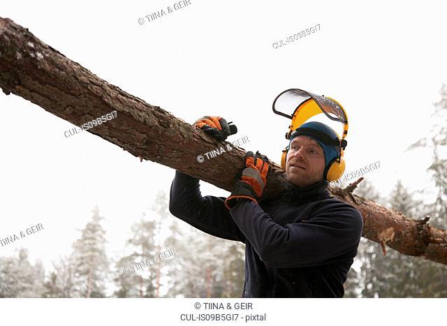 Logger carrying log, Tammela, Forssa, Finland