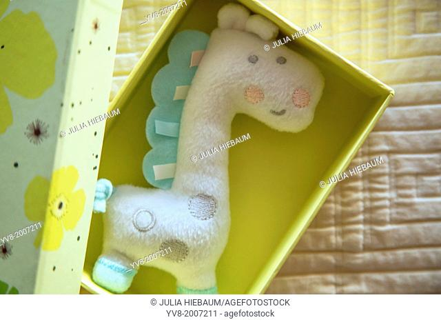 Soft toy inside open box