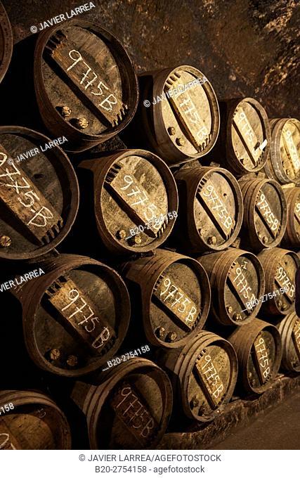 Lopez de Heredia Viña Tondonia, Rioja wine cellar, Barrio de la Estación, Haro, La Rioja, Spain, Europe