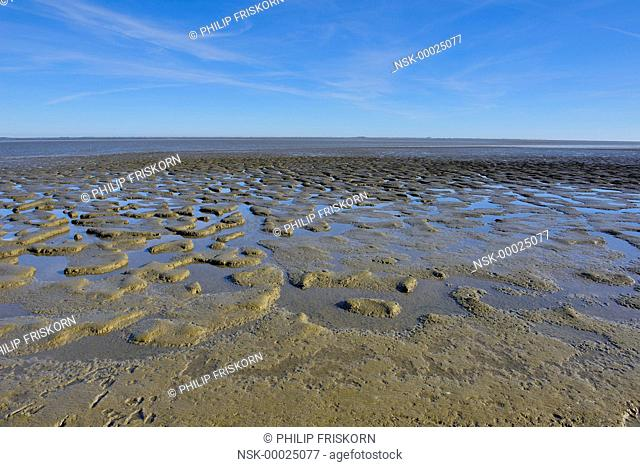 Overview of the Waddensea at low tide with sand-bank and mud field, The Netherlands, Friesland, Waddensea