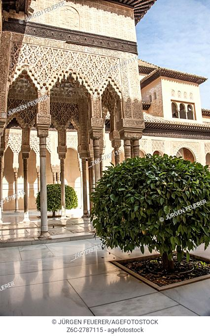 Court of the Lions, Alhambra in Granada, Andalusia, Spain
