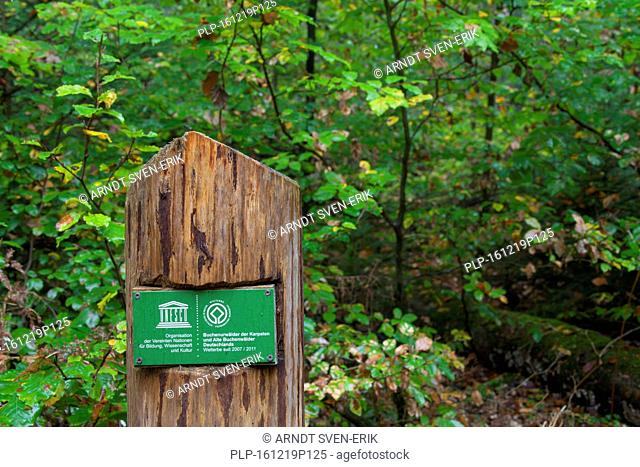Unesco sign in the Müritz National Park / Müritz Nationalpark, Mecklenburg-Western Pomerania, Germany