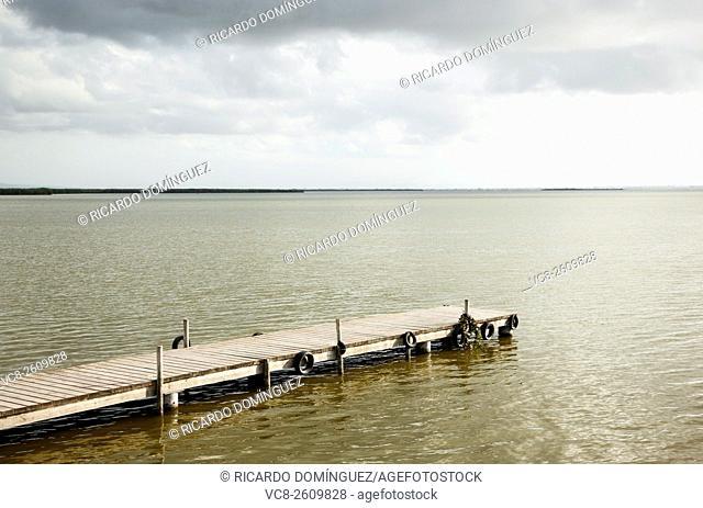 Wood dock at the Albufera. Valencia, Spain