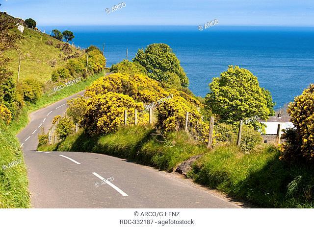 Torr Head, Cushendun, Northern Ireland