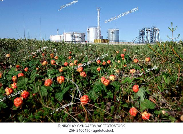 Russia, Khanty-Mansi Autonomous Okrug-Yugra. Oil company Russneft. Nizhnevartovsk district