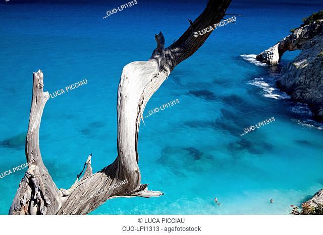 Cala Goloritzè, Baunei, Golfo di Orosei, Ogliastra, Sardinia, Italy, Europe