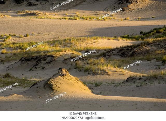 Sunrise above the dunes, Lithuania, Klaipeda, Curonian Spit