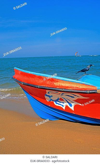 Fisherman, Negombo, Sri Lanka