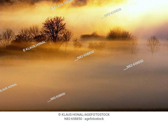Sunrise in foggy morning at the woernitz (Wörnitz) river. A big screen of fog at the woernitz river, Middle Franconia, Bavaria/Germany