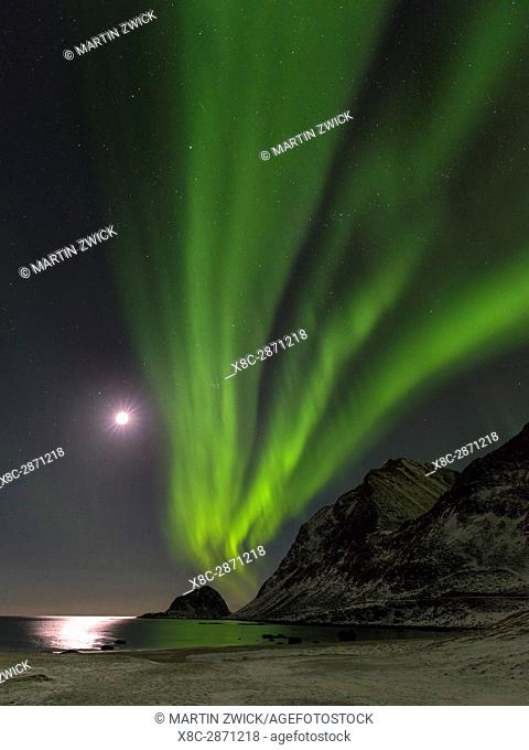 Northern Lights over Haukland Beach, island Vestvagoy. The Lofoten islands in northern Norway during winter. Europe, Scandinavia, Norway, February