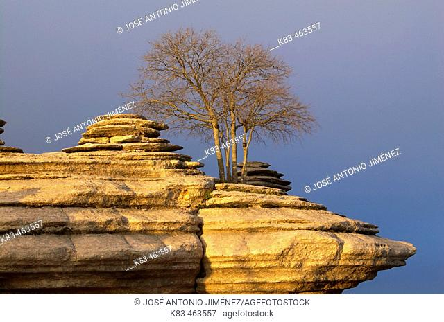 Erosion working on Jurassic limestones, Torcal de Antequera. Málaga province, Andalusia, Spain