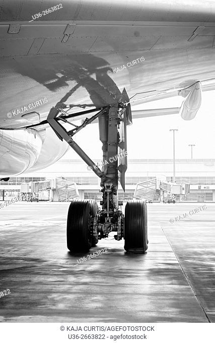 Airplane wheels, Václav Havel Airport, Prague, Czech Republic