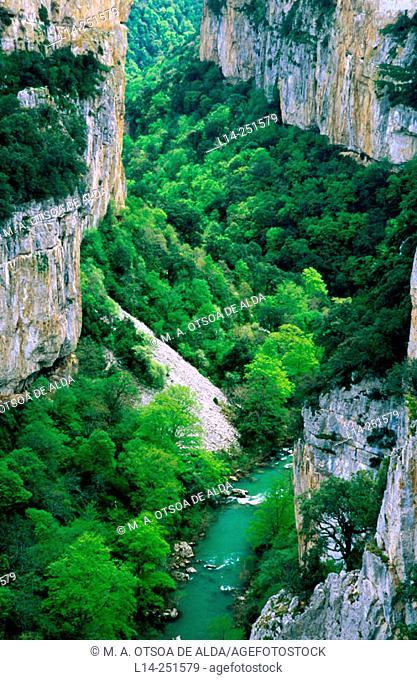 Foz de Arbaiun. Irati river. Navarra. Spain