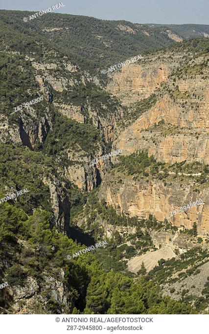 River Jucar canyon. Jalance. Valle de Ayora. Valencian Community. Spain