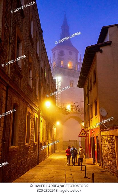 Cathedral of Santa Maria, Old town, Vitoria-Gasteiz, Araba, Basque Country, Spain, Europe