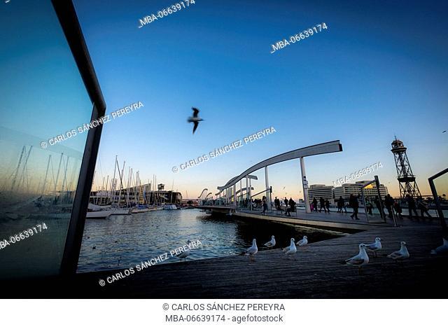 Rambla de Mar walkway, Maremagnum. Port Vell, Barcelona, Catalonia, Spain