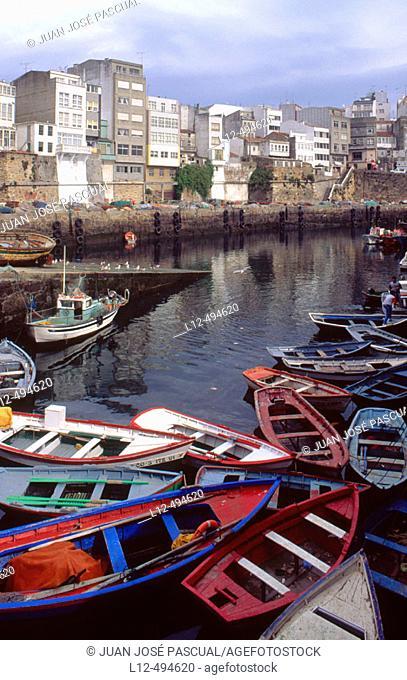 Fishing port of Malpica, Costa da Morte. La Coruña province, Galicia, Spain