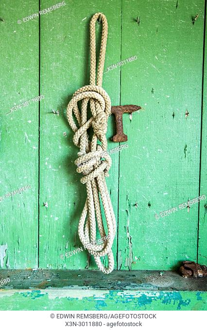 Rope hangs on wall of shed with chipping green paint, Cambridge, Maryland. USA