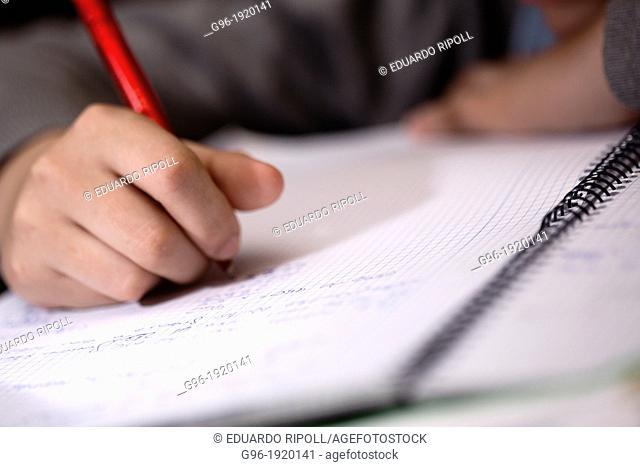 Boy doing the homeworks