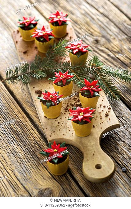 Christmas confectionery: poinsettias in flower pots