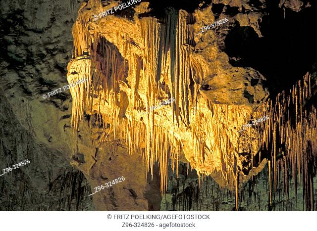 Carlsbad Caverns National Park. New Mexico. USA