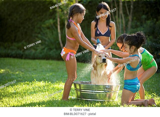Group of Hispanic girls washing dog