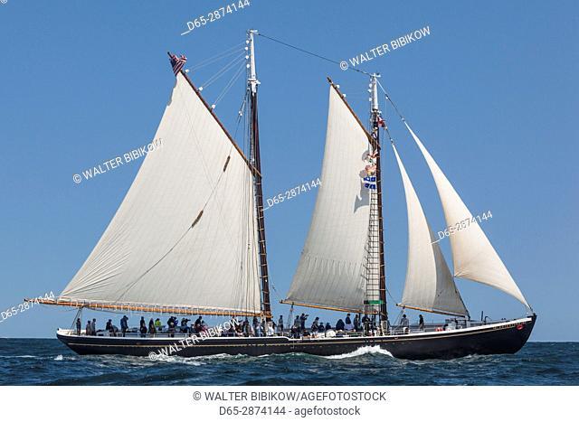 USA, Massachusetts, Cape Ann, Gloucester, America's Oldest Seaport, Gloucester Schooner Festival, schooner sailing ships
