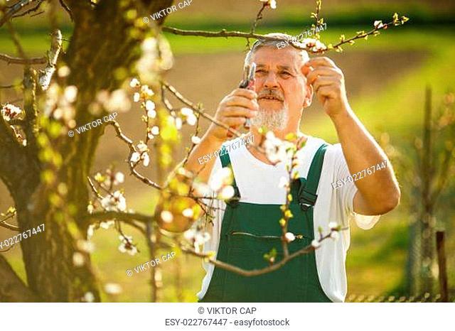 Portrait of a handsome senior man gardening in his garden
