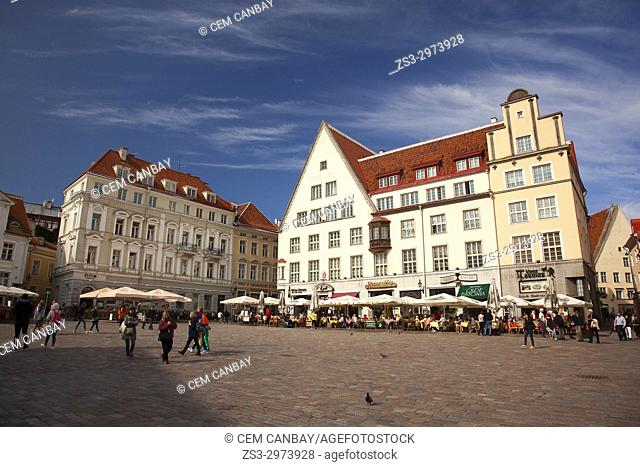 People in front of the colorful houses in the main Square Raekoja Plats, Tallinn, Estonia, Baltic States, Europe