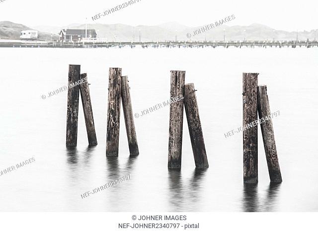 Wooden poles in sea