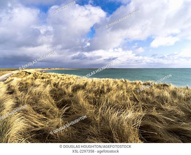 Elsness SANDAY ORKNEY Marram grass coastal bay