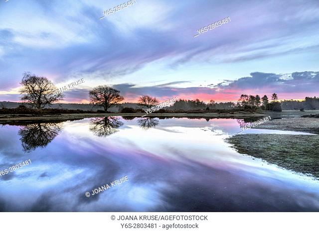 sunrise at Mogshade Pond, Bratley View, New Forest, Hampshire, England