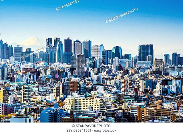 Tokyo, Japan at Shinjuku with Fuji Mountain on the horizon