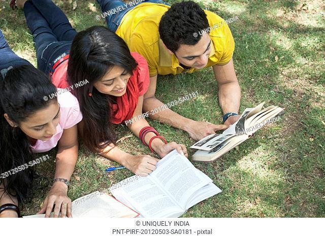 Friends studying in a park, Lodi Gardens, New Delhi, Delhi, India