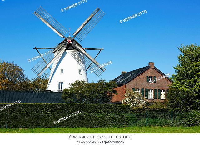 Germany, Nettetal, Maas-Schwalm-Nette Nature Park, Schwalm-Nette Nature Park, Lower Rhine, Rhineland, North Rhine-Westphalia, NRW, Nettetal-Schaag, Schaag Mill