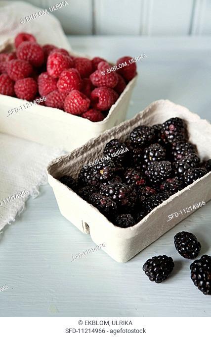 Blackberries and raspberries in cardboard punnets