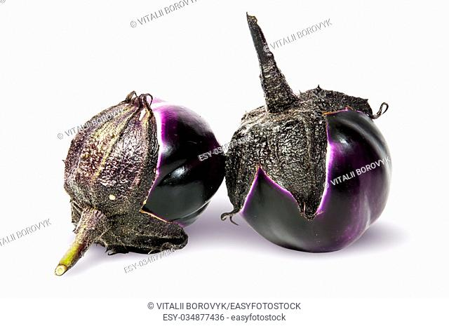 Supine and standing round ripe eggplants isolated on white background