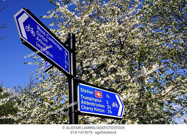 Cyclepath Signpost, Newnham, Cambridge, England, UK