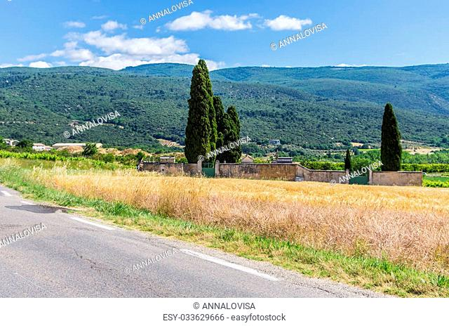 Agricultural landscape in France with a cemetery at the corn field