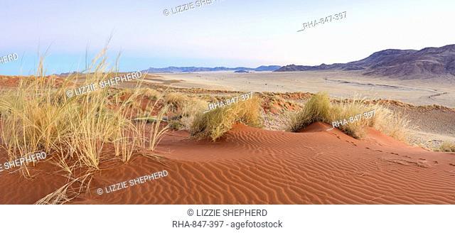 Panorama of the dunes and surrounding scenery of NamibRand at dawn, Namib Desert, Namibia, Africa
