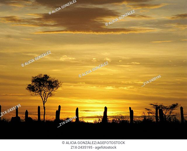Sunset Guarico State Venezuela