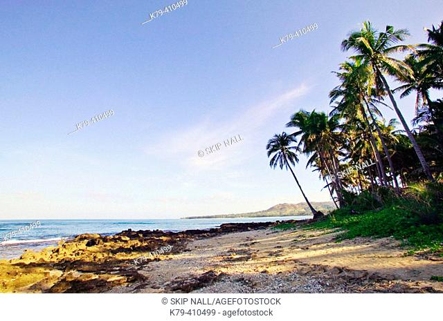 Ocean with Palm Trees, Early Morning, Tropical Paradise, Ilocos Norte, Pagudpud, Philippines