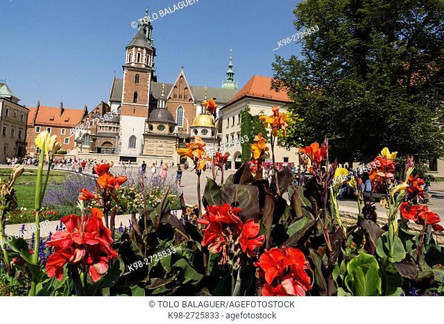 Catedral de Wawel, santuario nacional polaco, Cracovia,Polonia, eastern europe