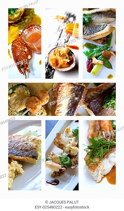 Collage of various fish and sea food dishes