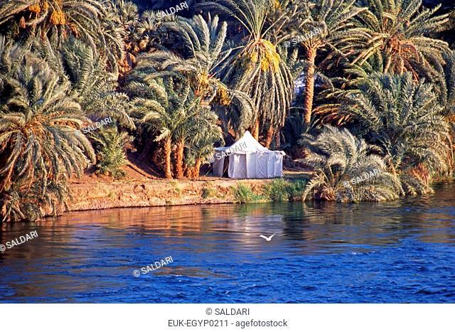 Along the banks of the Nile,Egypt